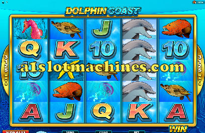 Click here to play Dolphin Coast Slot Machine